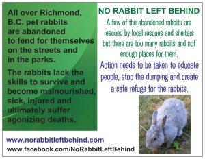 NRLB overview postcard back