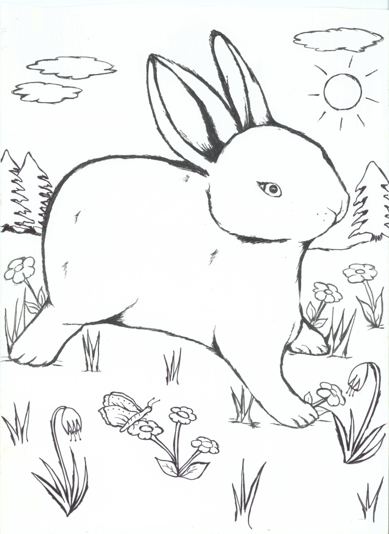 COLOURING2 (2)