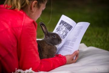 Jingles reading book 351